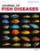 Journal of Fish Diseases (JFD) cover image