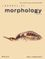 Journal of Morphology (JMOR) cover image