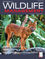 The Journal of Wildlife Management (JWMG) cover image