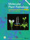 Molecular Plant Pathology (MPP2) cover image