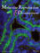 Molecular Reproduction and Development (MRD) cover image