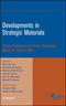 Developments in Strategic Materials, Volume 29, Issue 10 (0470345004) cover image