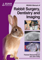 BSAVA Manual of Rabbit Surgery, Dentistry and Imaging (190531941X) cover image