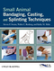 Small Animal Bandaging, Casting, and Splinting Techniques (0813819628) cover image