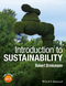 Introduction to Sustainability (1118487257) cover image