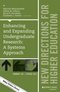 Enhancing and Expanding Undergraduate Research: A Systems Approach: New Directions for Higher Education, Number 169 (1119061369) cover image