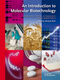 An Introduction to Molecular Biotechnology: Fundamentals, Methods and Applications, 2nd Edition (3527326375) cover image