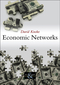 Economic Networks (074564998X) cover image