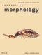 Journal of Morphology (JMOR) cover image