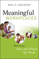 Meaningful Workplaces: Reframing How and Where we Work  (0470403004) cover image
