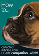 How To: Collected Articles from BSAVA Companion (1905319509) cover image