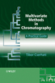 Multivariate Methods in Chromatography: A Practical Guide (047005820X) cover image