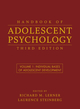 Handbook of Adolescent Psychology, Volume 1: Individual Bases of Adolescent Development, 3rd Edition (0470149213) cover image