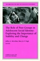 The Role of Peer Groups in Adolescent Social Identity: Exploring the Importance of Stability & Change: New Directions for Child and Adolescent Development, Number 84 (0787912514) cover image