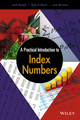 A Practical Introduction to Index Numbers (1118977815) cover image
