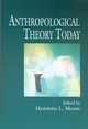Anthropological Theory Today (0745620221) cover image