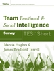 Team Emotional and Social Intelligence (TESI Short)