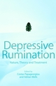Depressive Rumination: Nature, Theory and Treatment  (0471486922) cover image