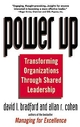 Power Up: Transforming Organizations Through Shared Leadership (0471121223) cover image
