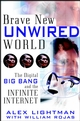 Brave New Unwired World: The Digital Big Bang and the Infinite Internet (0471218723) cover image