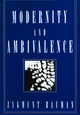 Modernity and Ambivalence (0745612423) cover image