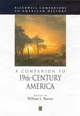 A Companion to 19th-Century America (1405149825) cover image