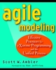 Agile Modeling: Effective Practices for eXtreme Programming and the Unified Process (0471202827) cover image