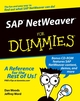 SAP NetWeaver For Dummies (0764568833) cover image