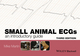 Small Animal ECGs: An Introductory Guide, 3rd Edition (1118409736) cover image