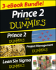 PRINCE 2 For Dummies Three e-book Bundle: Prince 2 For Dummies, Project Management For Dummies & Lean Six Sigma For Dummies (1118621336) cover image