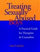 Treating Sexually Abused Boys: A Practical Guide for Therapists & Counselors (0787947938) cover image