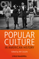 Popular Culture in American History, Second Edition (EHEP002838) cover image