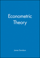 Econometric Theory (0631215840) cover image