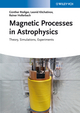 Magnetic Processes in Astrophysics: Theory, Simulations, Experiments (3527410341) cover image