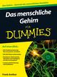Das menschliche Gehirn für Dummies (3527665943) cover image
