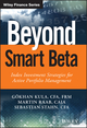 Beyond Smart Beta: Index Investment Strategies for Active Portfolio Management (1119315247) cover image
