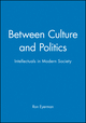 Between Culture and Politics: Intellectuals in Modern Society (074560904X) cover image