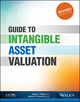 Guide to Intangible Asset Valuation, Revised Edition (1937352250) cover image