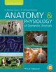 Anatomy and Physiology of Domestic Animals, 2nd Edition (EHEP003051) cover image