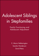 Adolescent Siblings in Stepfamilies: Family Functioning and Adolescent Adjustment (0631221557) cover image