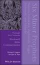 Six Minor Prophets Through the Centuries: Nahum, Habakkuk, Zephaniah, Haggai, Zechariah, and Malachi (140517675X) cover image