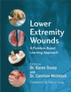 Lower Extremity Wounds: A Problem-Based Approach (0470512660) cover image