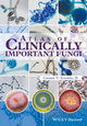 Atlas of Clinically Important Fungi (1119069661) cover image