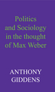 Politics and Sociology in the Thought of Max Weber (0745670962) cover image