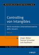 Controlling von Intangibles: Nicht-monetäre Unternehmenswerte aktiv steuern (3527666362) cover image