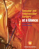 Vascular and Endovascular Surgery at a Glance (EHEP003066) cover image