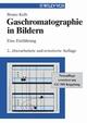 Gaschromatographie in Bildern: Eine Einführung, 2nd Edition (3527306870) cover image