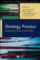 Strategy Process: Shaping the Contours of the Field (1405100672) cover image