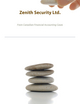 Zenith Security Ltd.: A Case from Financial Accounting Cases (1119917875) cover image
