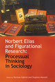 Norbert Elias and Figurational Research: Processual Thinking in Sociology (1444339575) cover image